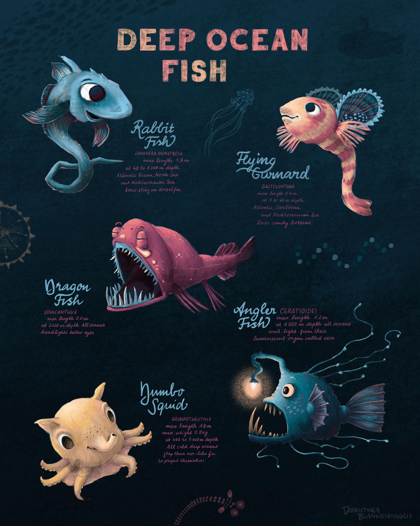 tiefseefische-anglerfisch-fische-illustration-plakat-poster-dorothea-blankenhagen-berlin1.jpg