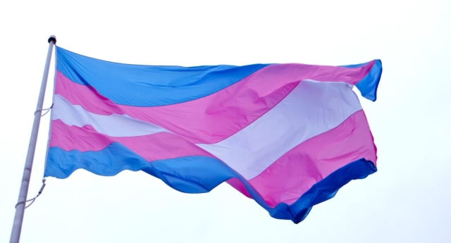 NPP_NATIONAL_PROGRESS_PARTY_FLAG_5_640x345_acf_cropped-1.jpg