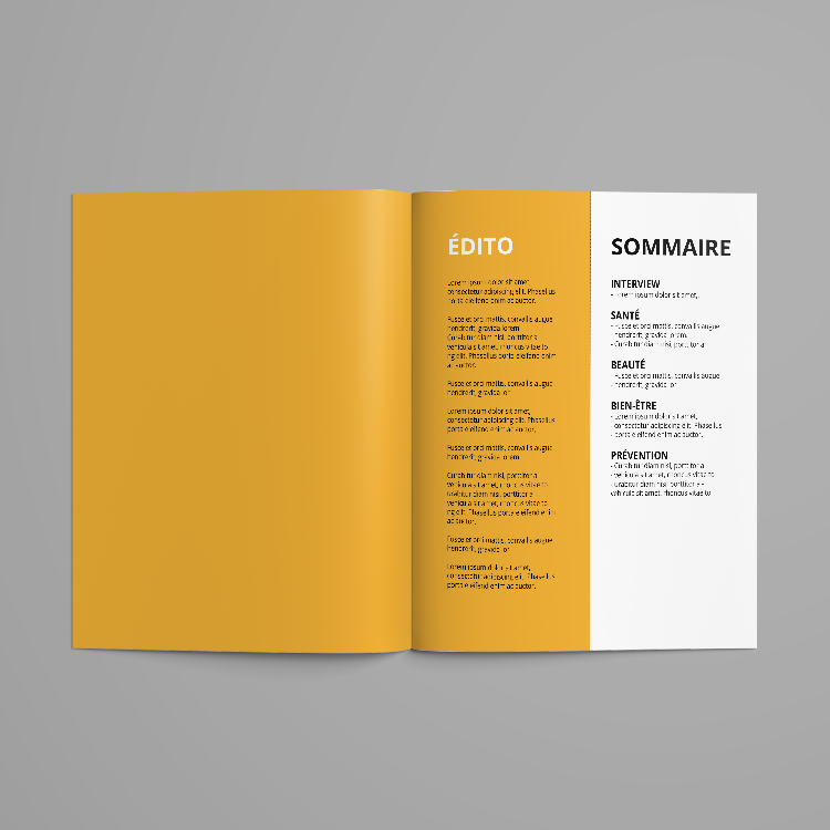 Conseil, proposition de sommaire, création de contenus éditoriaux, gestion de projet   * Texte brut non maquetté - possibilité d'achat d'art