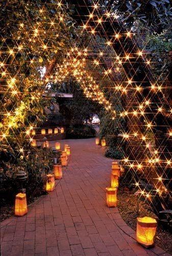 garden lights.jpg