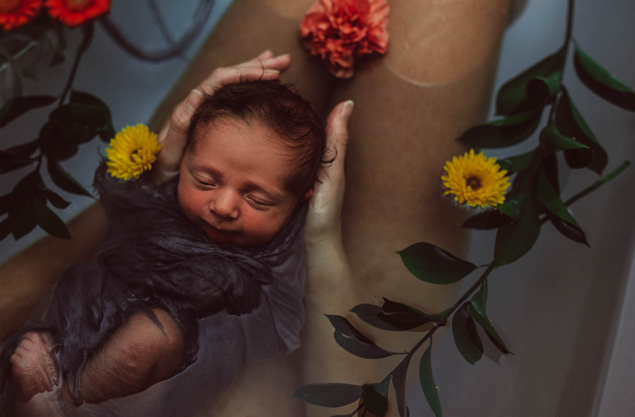 Exeter newborn photographer