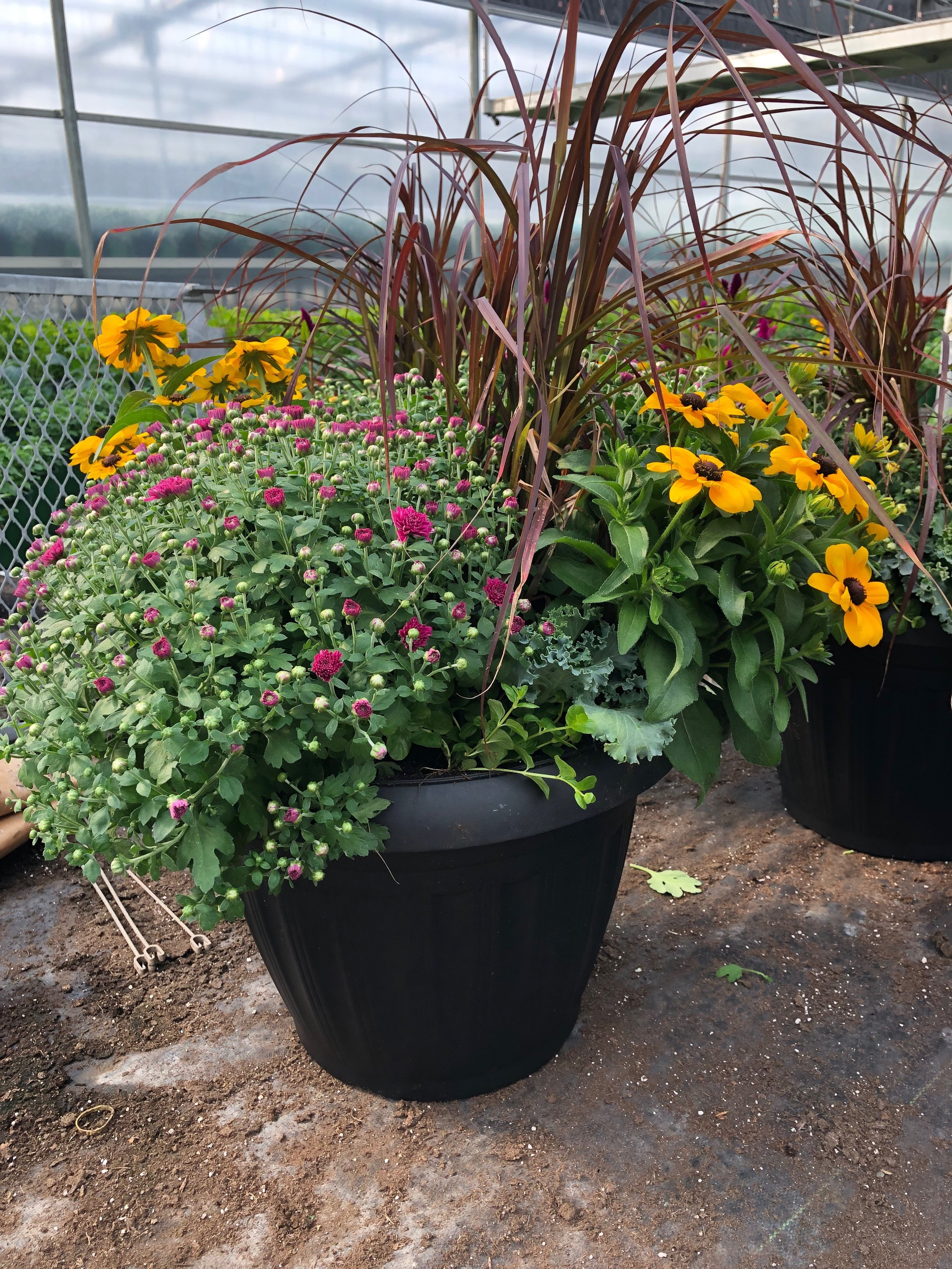 "DR Missions Fall Planter Fundraiser - Help support our Youth DR Missions Team by purchasing a stunning Fall Planter. These beautiful mixed planters are 16"" and perfect for a gift or your home.Cost: $40 per planterPickup: Sat Sept 7 - 8-10amTo reserve: click HERE or order yours at the Welcome Centre on Sunday"