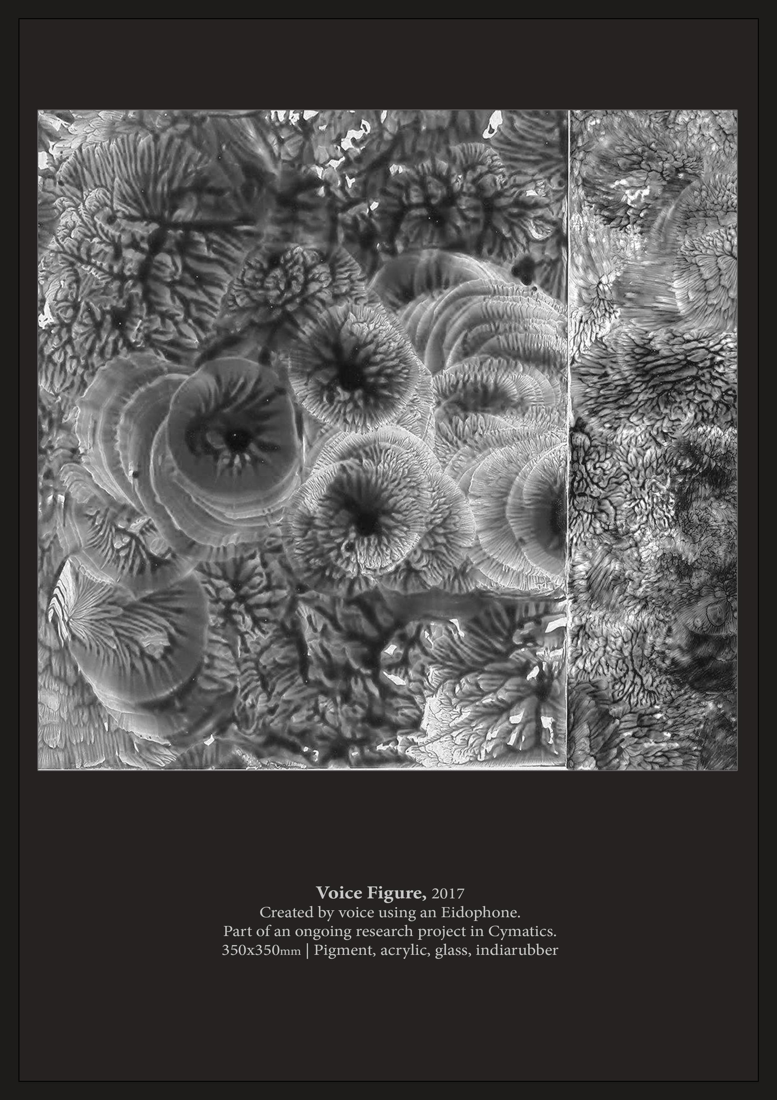 Luis Tapia - Portfolio 09.jpg