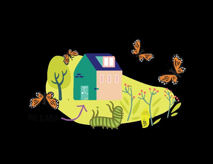 mariposa-uno.png
