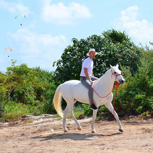 El secreto no está en ellos, ni en la experiencia que tengas montando ni si alguna vez has visto un #caballo... El secreto está en lo que TÚ proyectas. ¿No te lo crees? Observa cómo actúa tu perro con diferentes personas😉 #picoftheday #horse