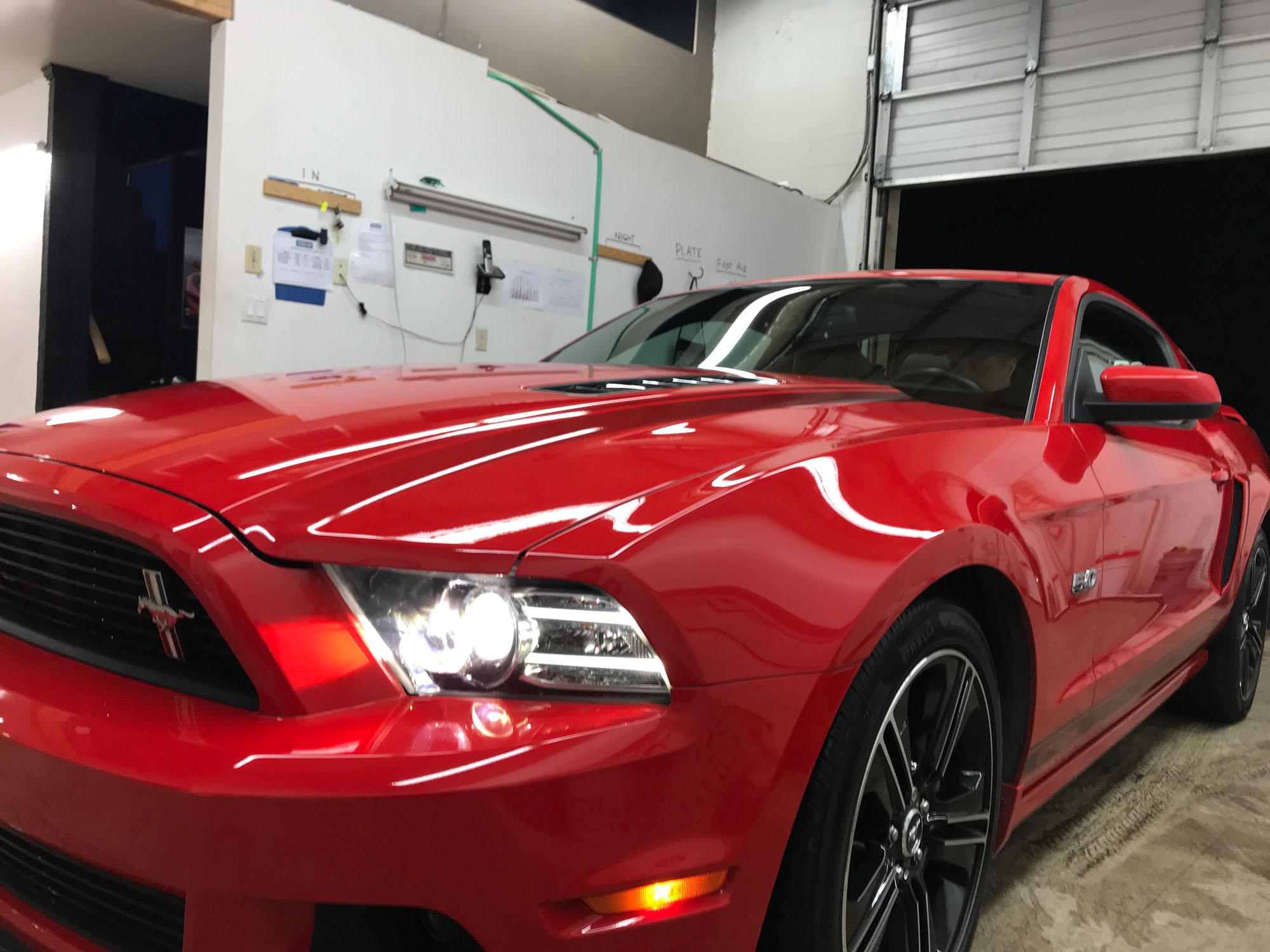 Mustang Feb 01 2018  (6) - Copy.jpg