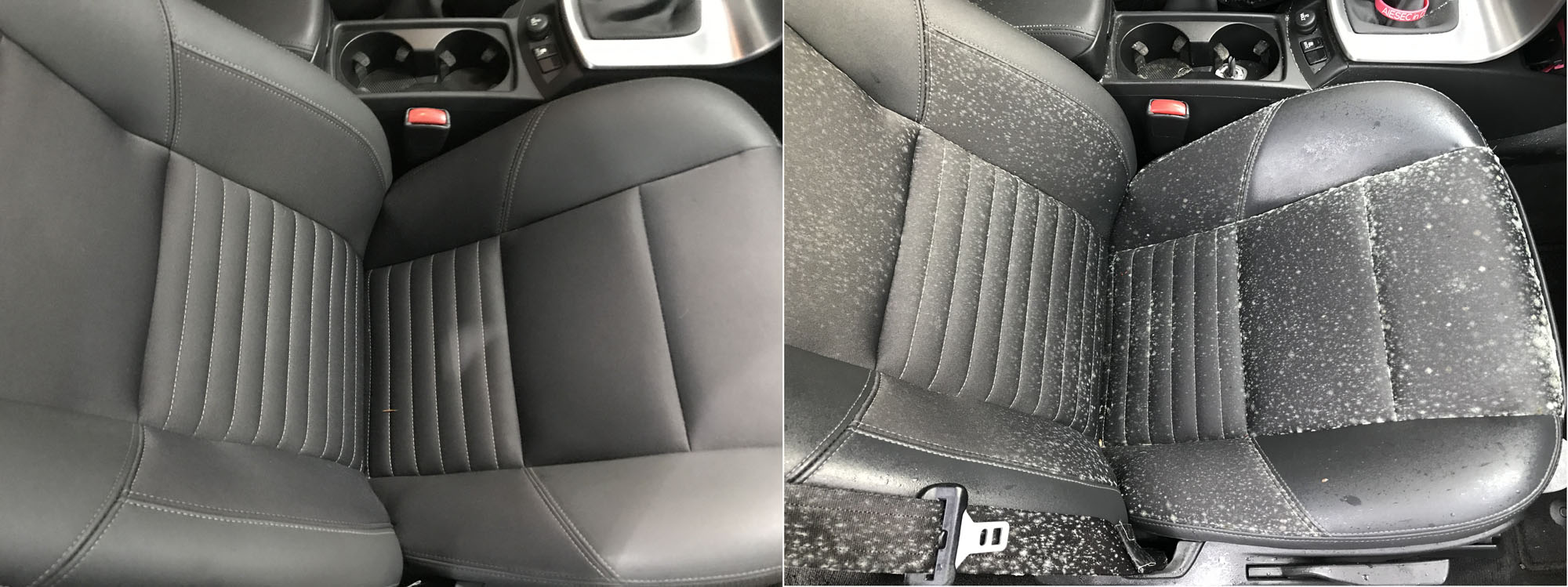Seat Mold before and after Nov 30 2018.jpg