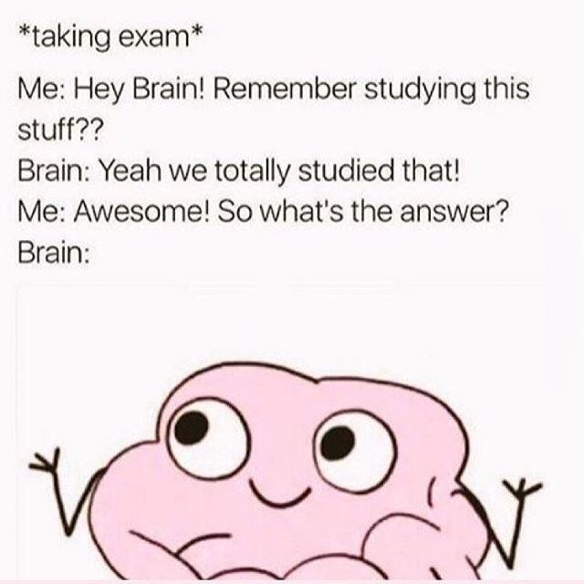 who can relate tho 🧠  #finalexams #examseason #strugglebus