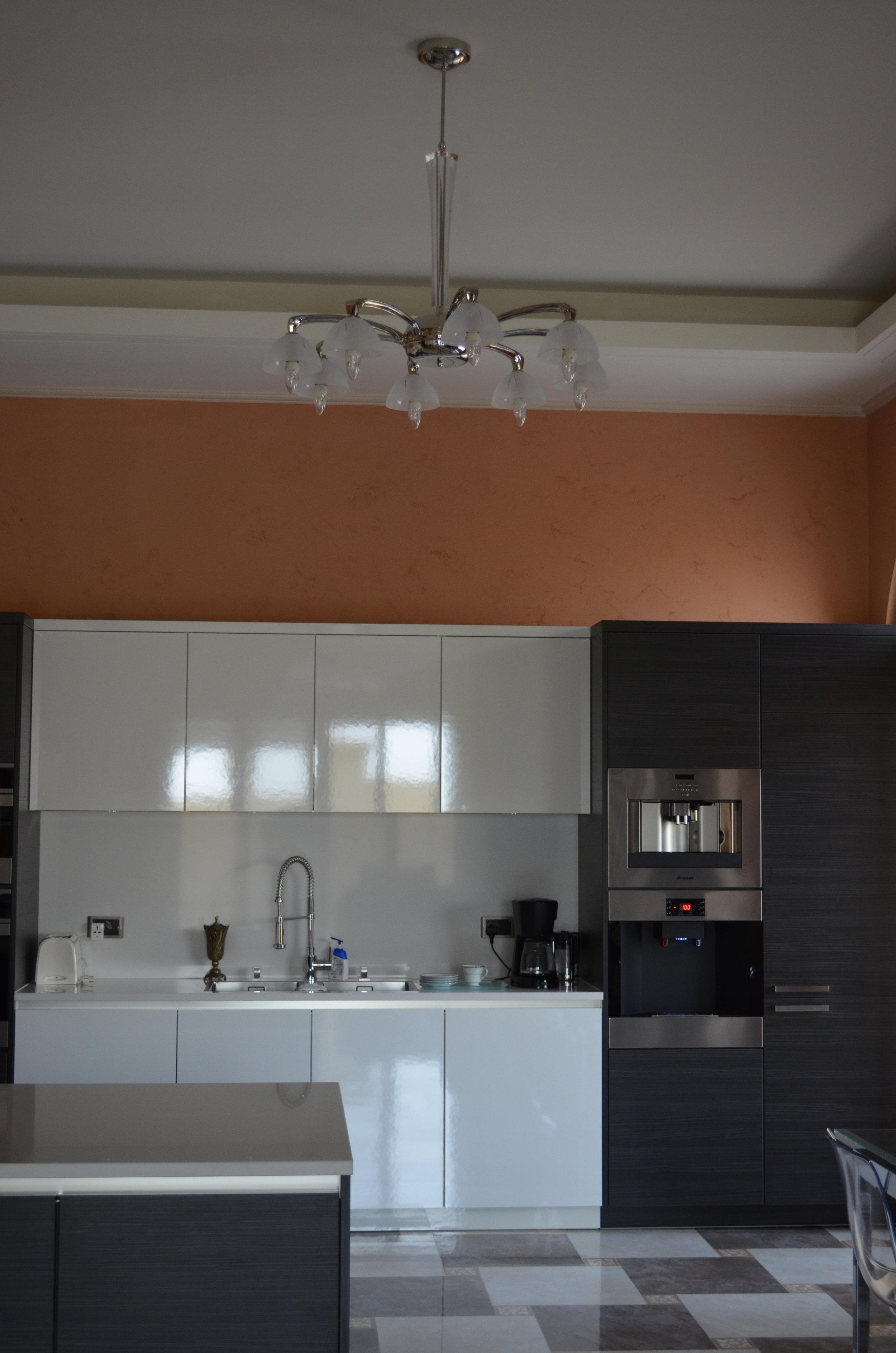 Wranovsky-Dubai-Kitchen-4.JPG