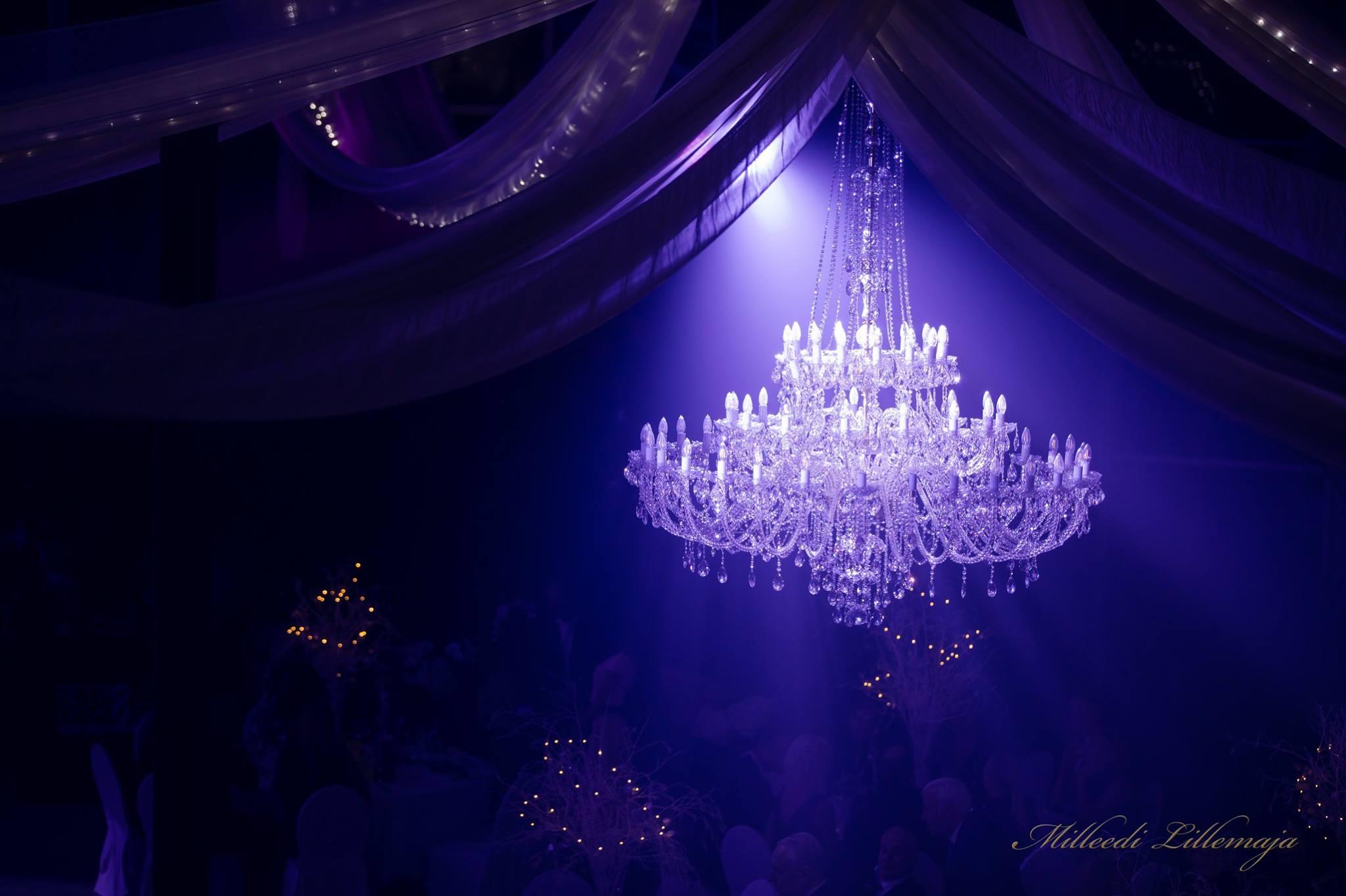 Princesse-60-Wranovsky-crystal-chandelier-Mileedi-1.jpg