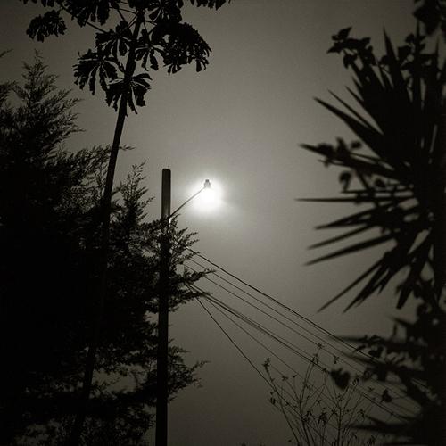 AORI.light2.jpg