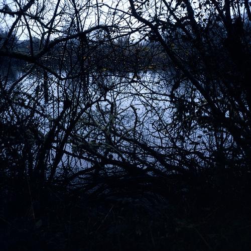 bones.crater.lake copy.jpg