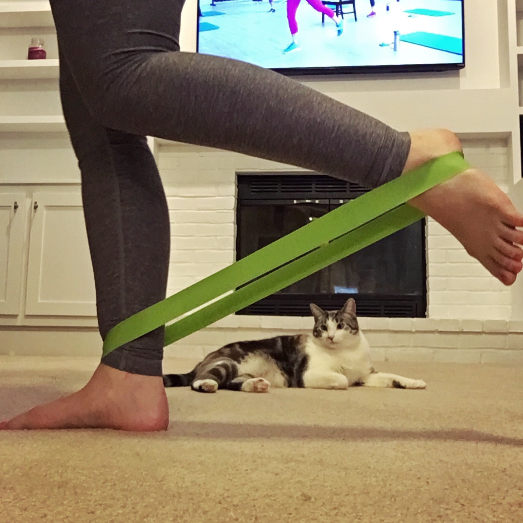 Resistance Loop with Cat