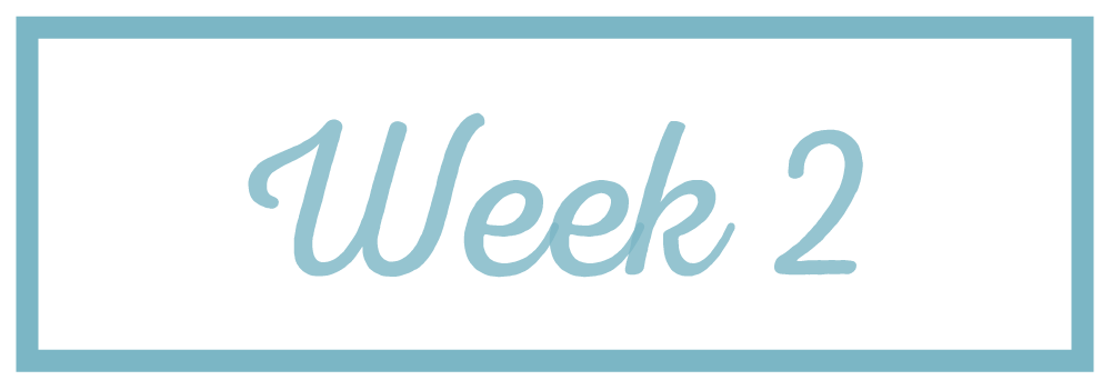Rachel Reaches_Week 2.png