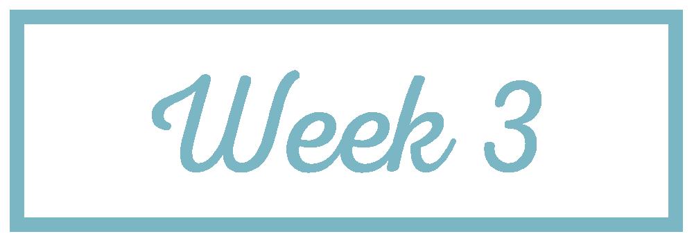 Rachel Reaches_Week 3.png