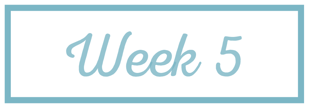 Rachel Reaches_Week 5.png
