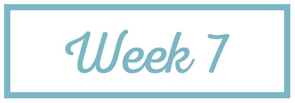 Rachel Reaches_Week 7.png