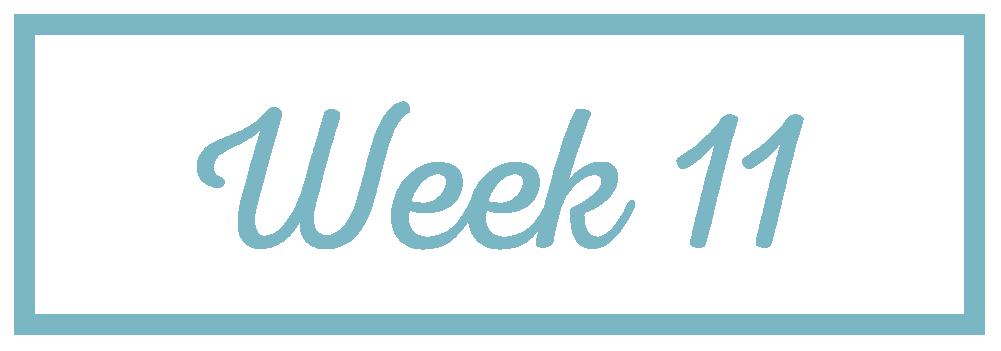 Rachel Reaches_Week 11.png