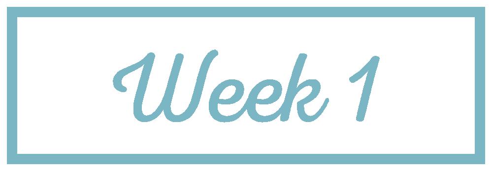 Rachel Reaches_Week 1.png