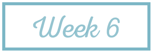 Rachel+Reaches_Week+6.png