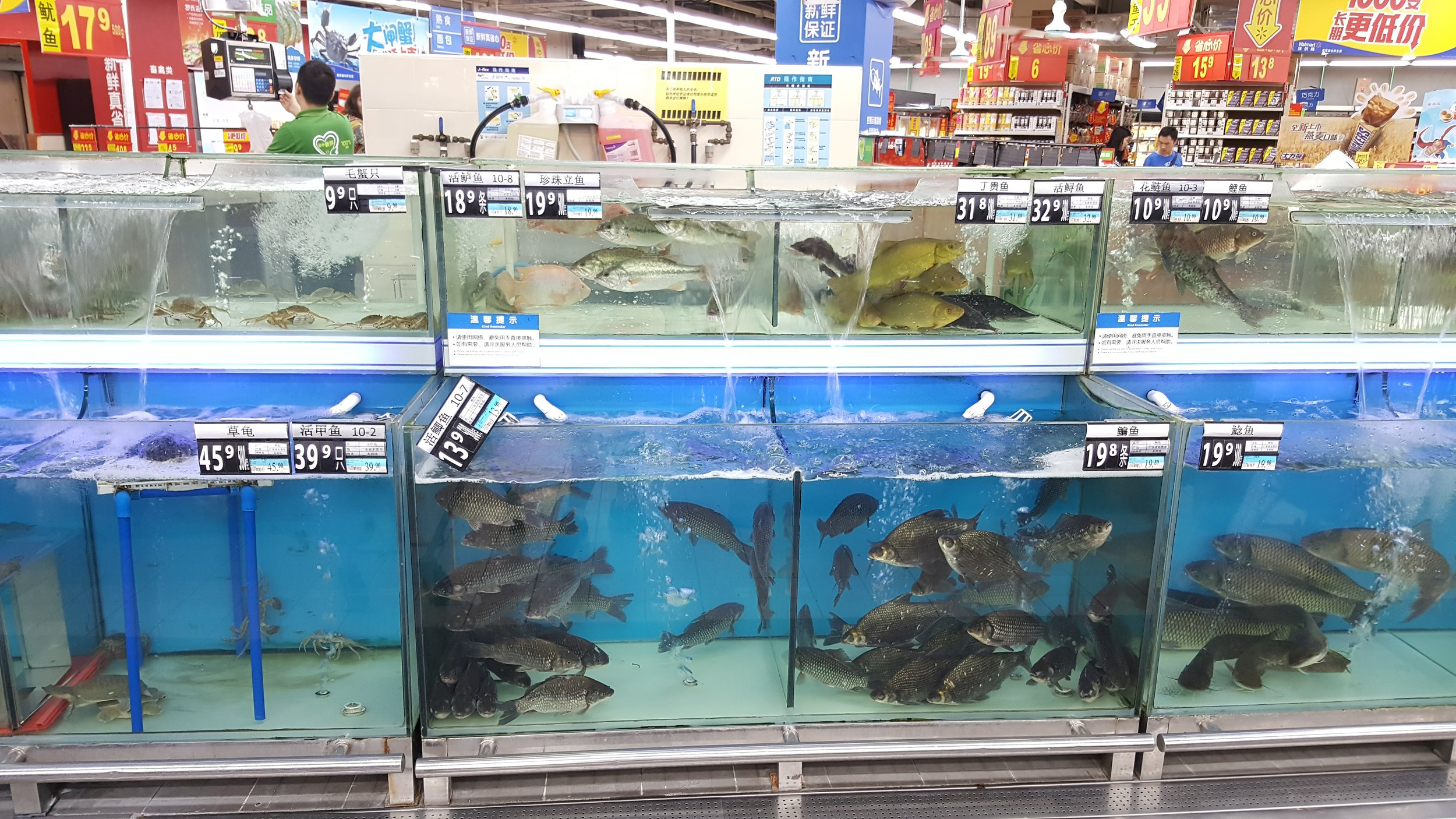 No, these are not for your fish tank.