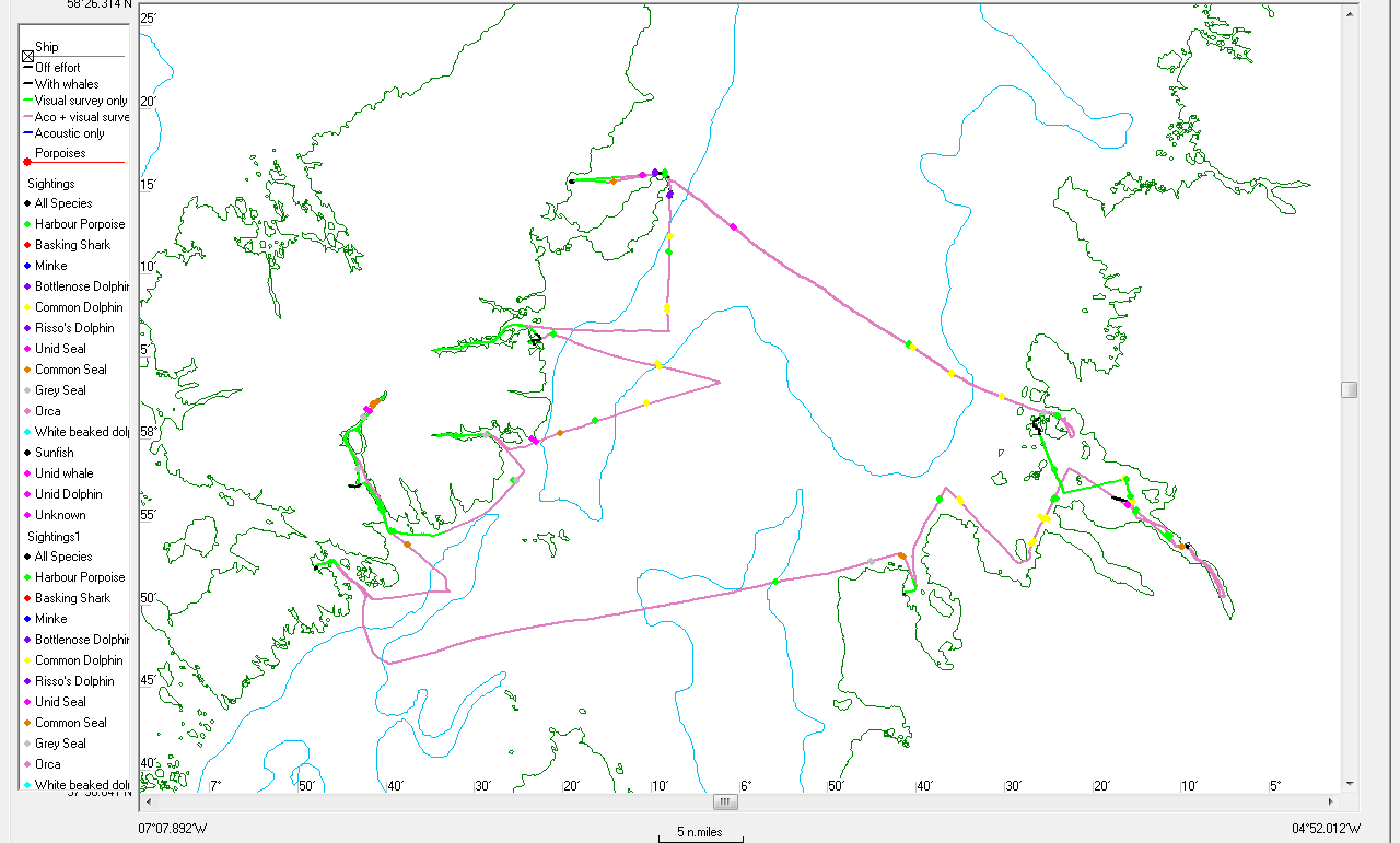 The track lines surveyed and anchorages made during HWDT 11