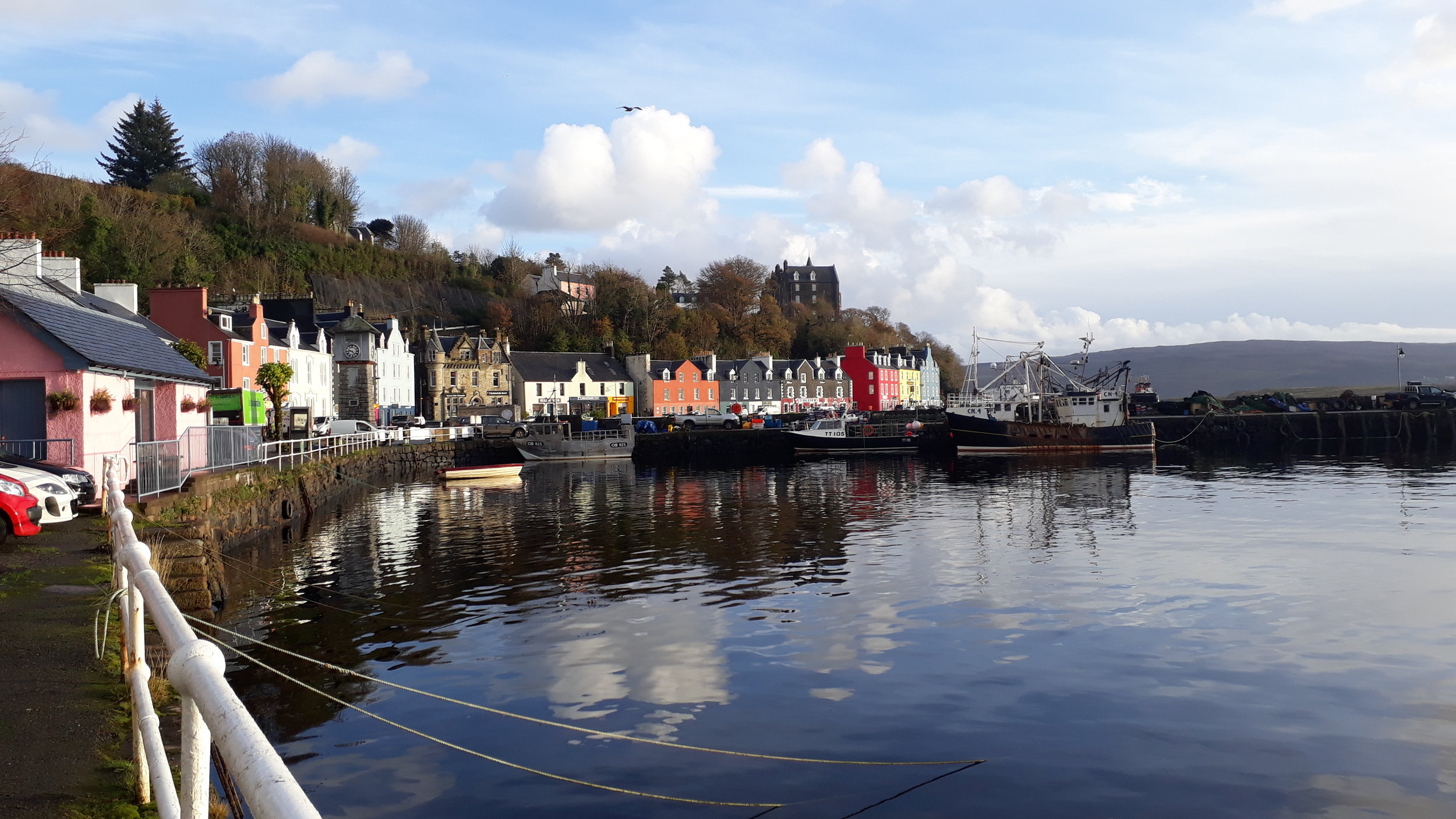 The picturesque town of Tobermory, headquarters of the Hebridean Whale and Dolphin Trust.