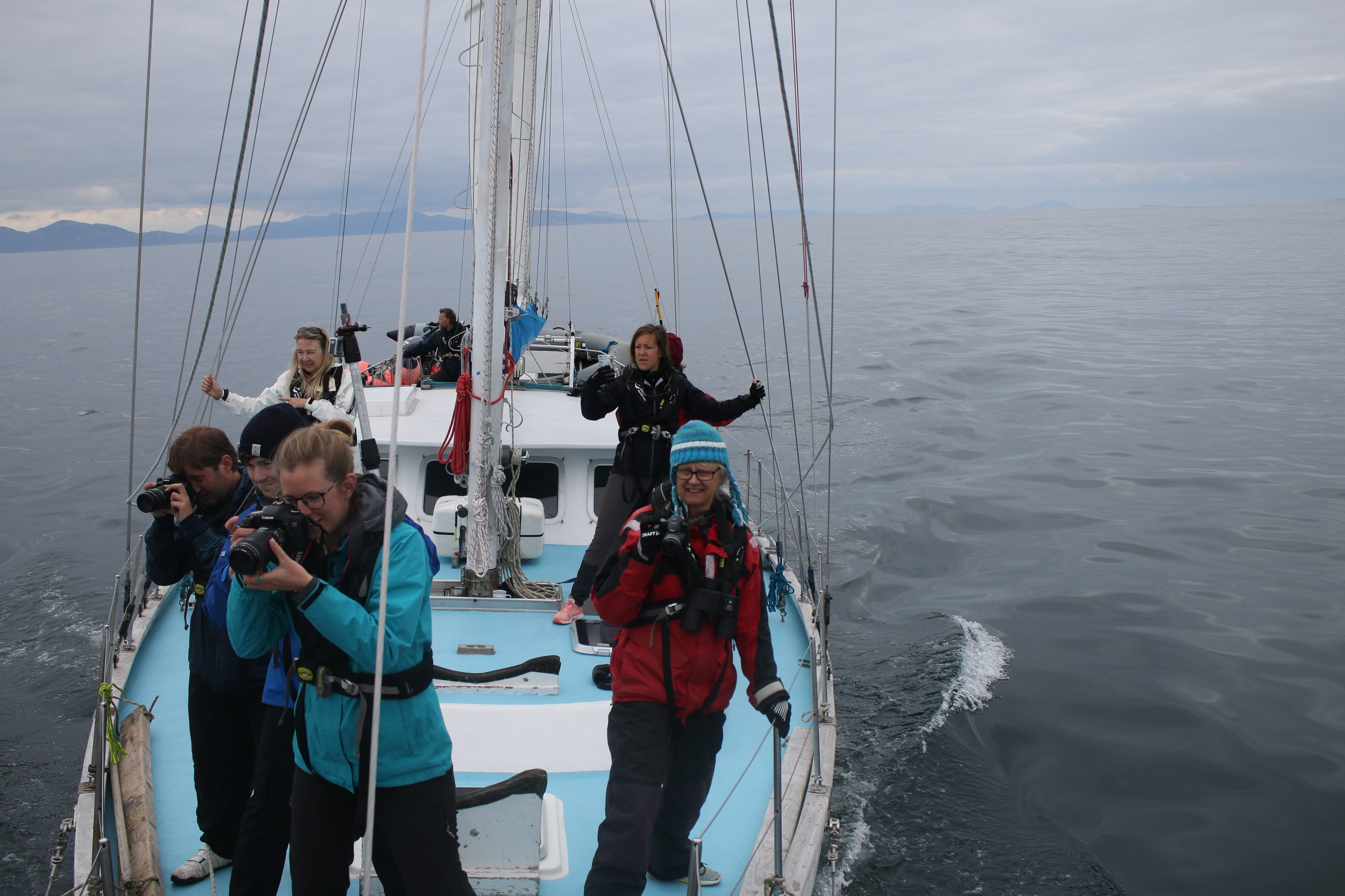 The team of citizen scientists on board Silurian taking photographs of the wildlife!