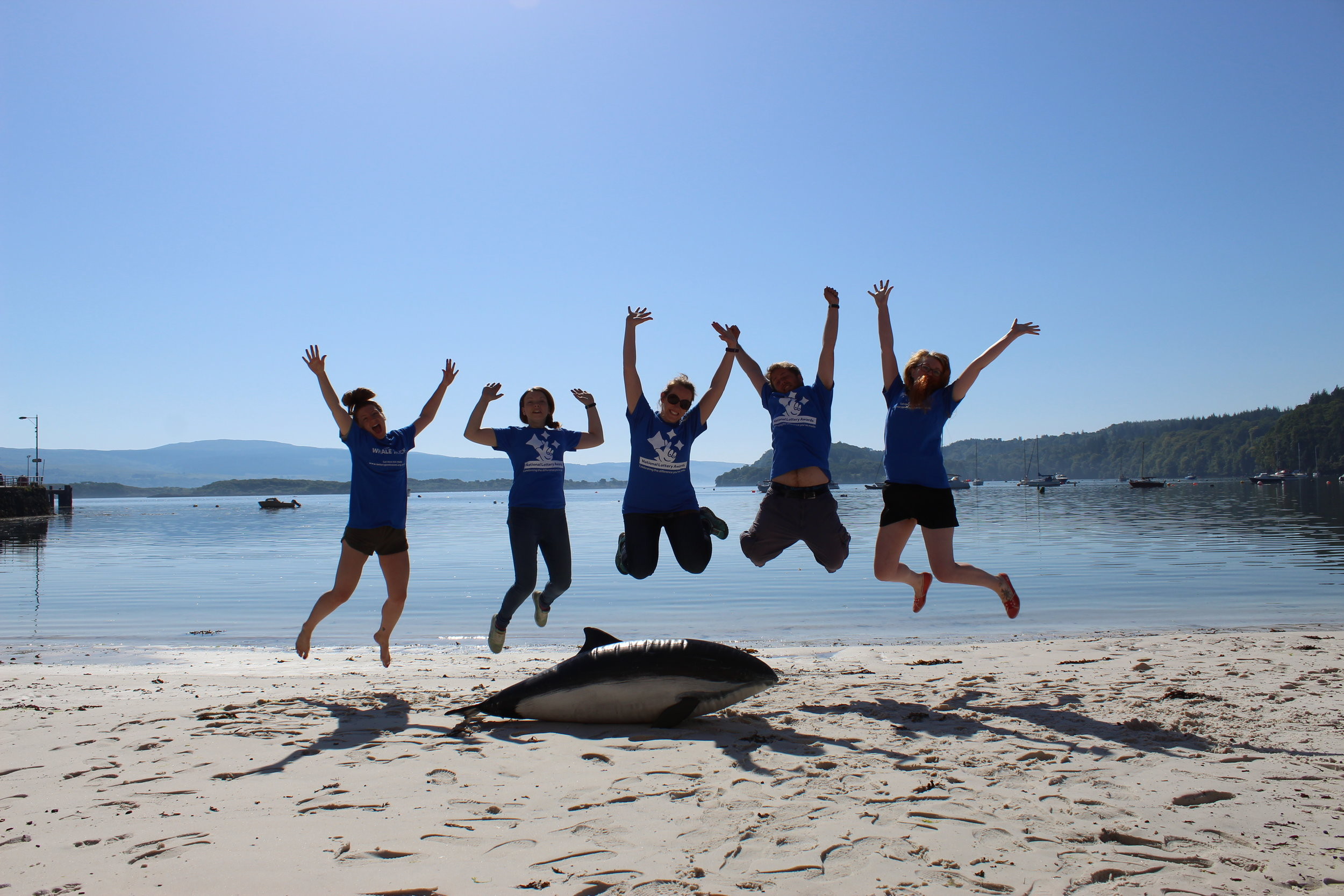 The HWDT team are jumping for joy over Whale Track's success!