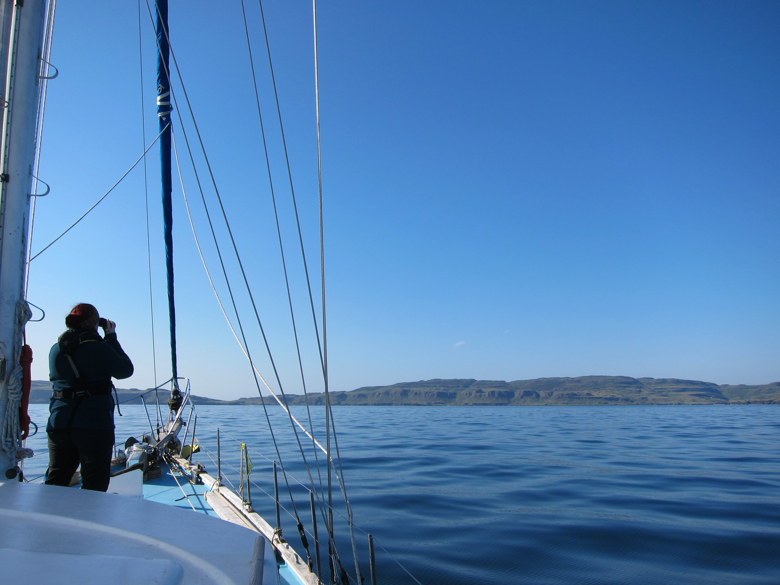Leanne looking out for marine wildlife in perfect spotting conditions during her 12th survey on Silurian