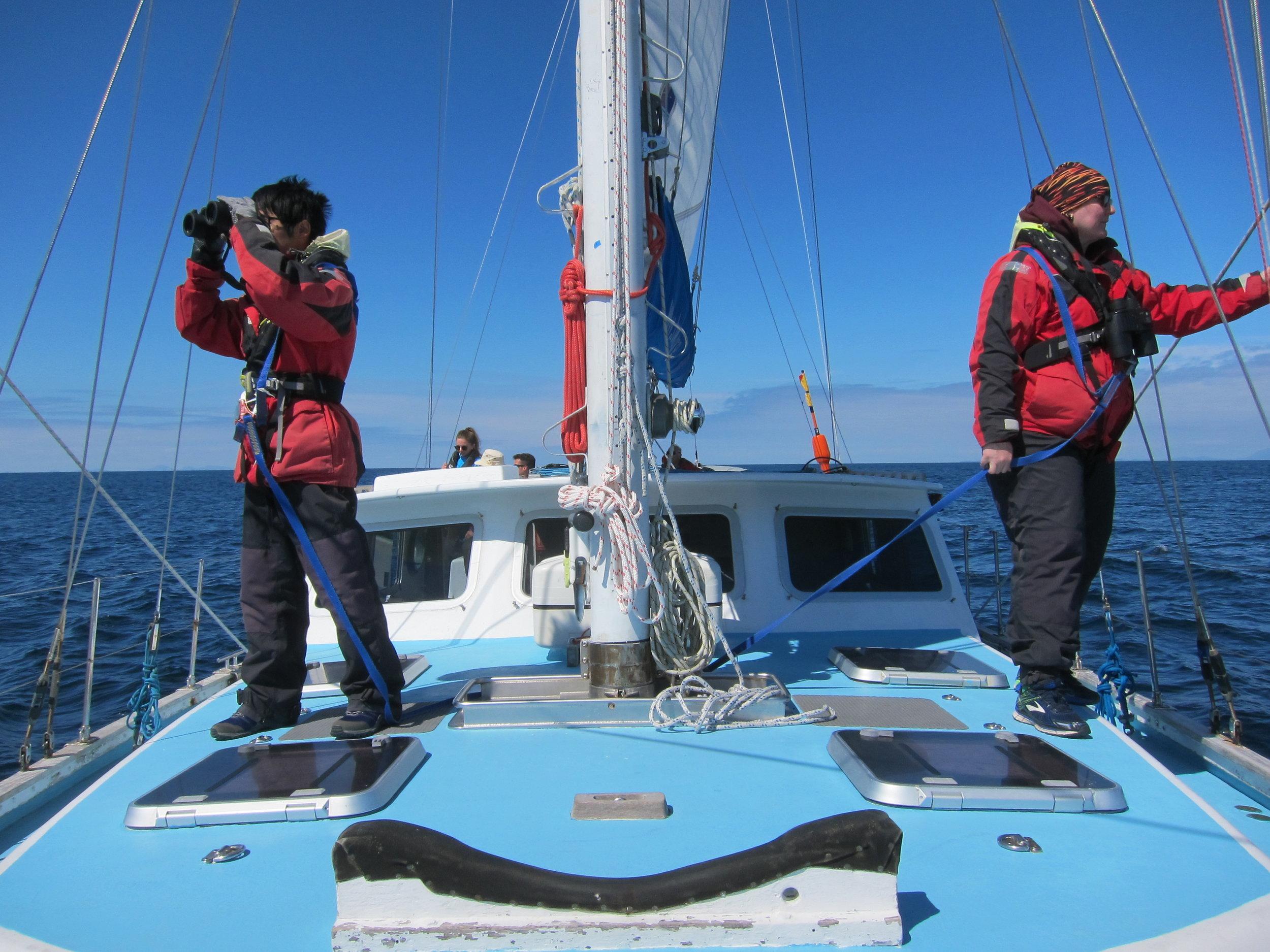 Volunteers on the mast.JPG