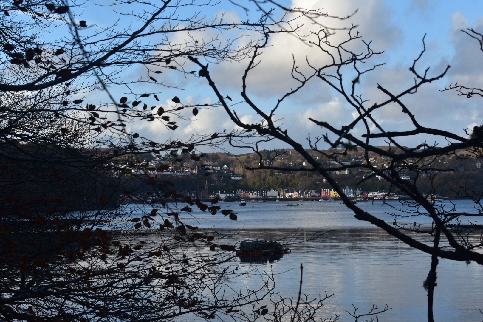 Wishing you all a very Merry Christmas and a happy new year from Tobermory