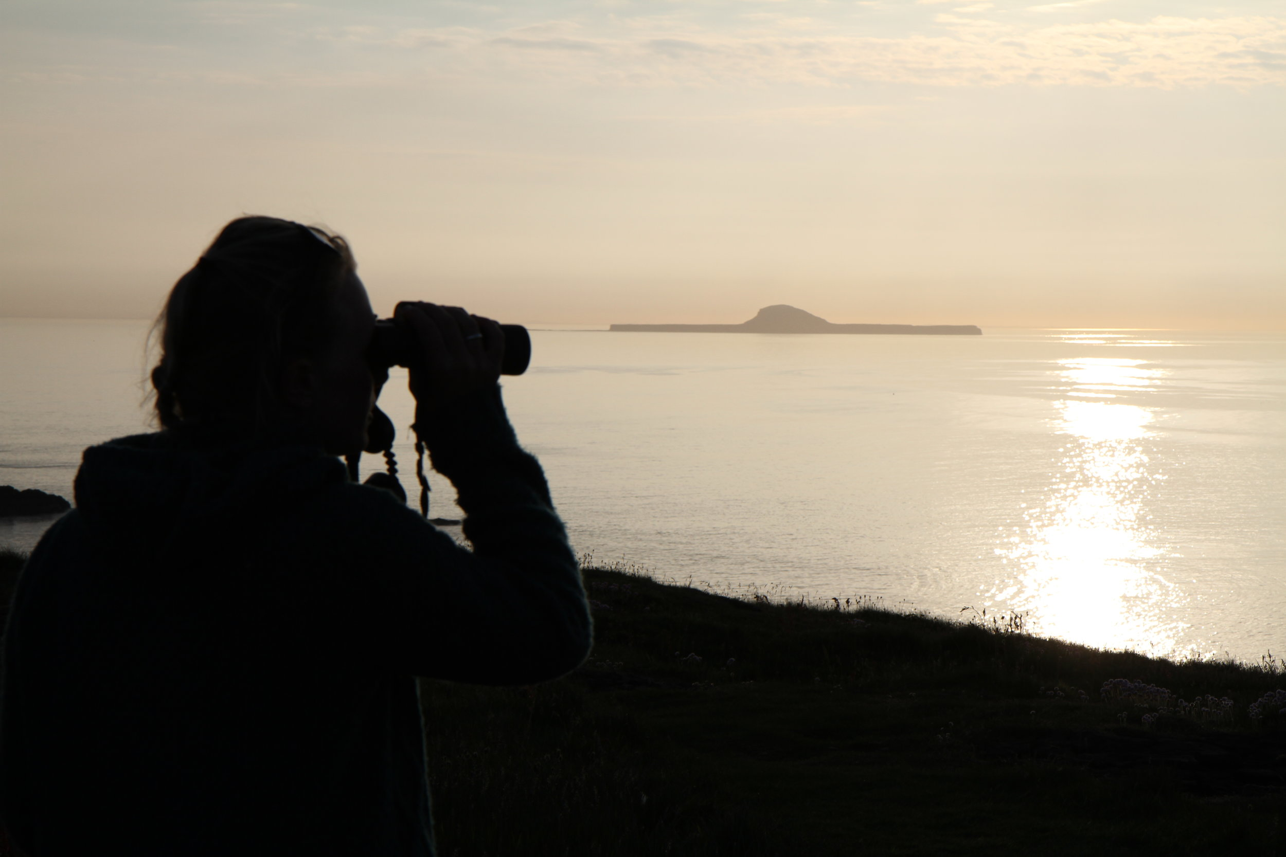Looking out towards Dutchman's Cap, Treshnish Isles © HWDT.JPG