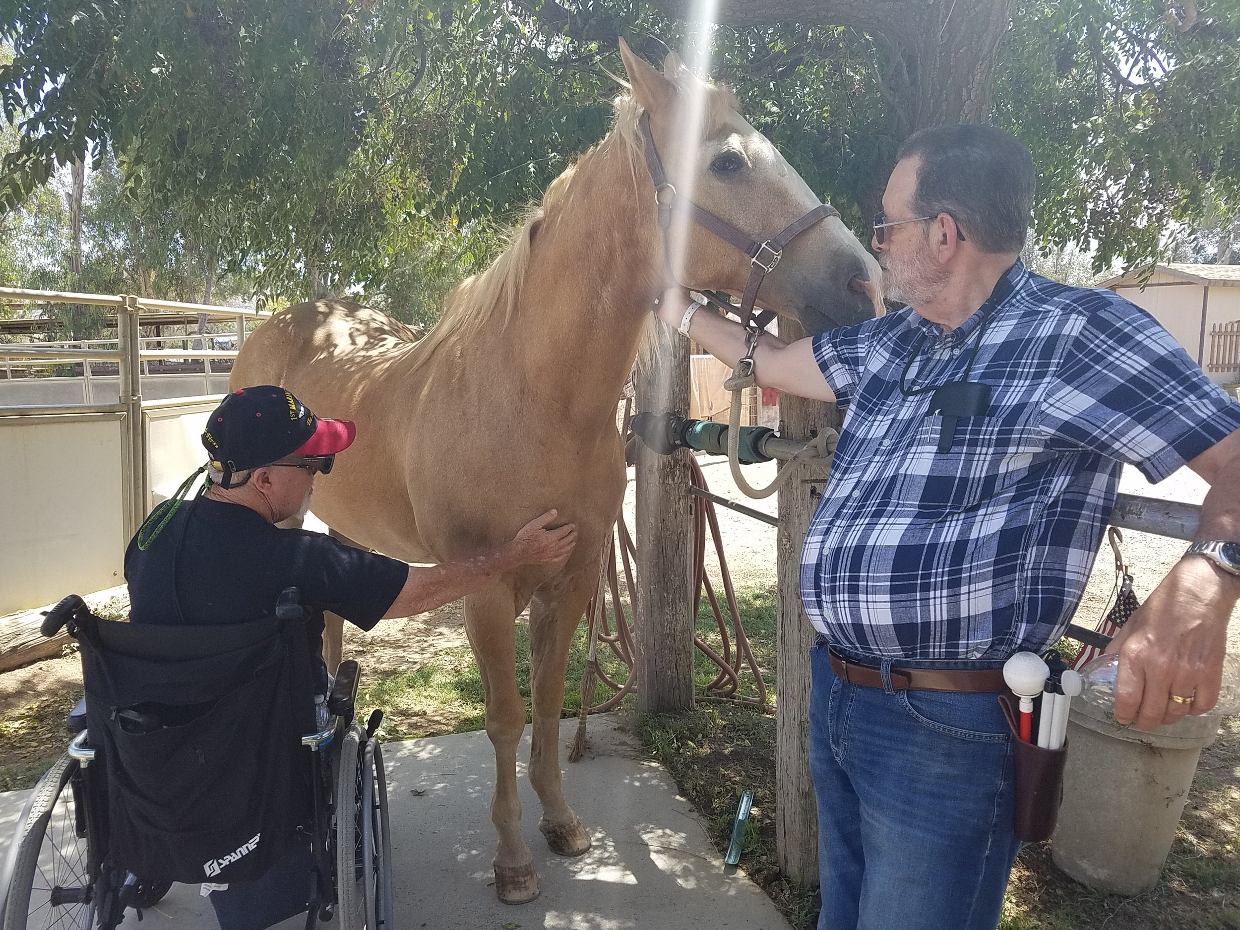 These blind Vietnam veterans got to spend the day with one of our horses, and discovered that bonds can be made and trust accomplished with all their other senses.