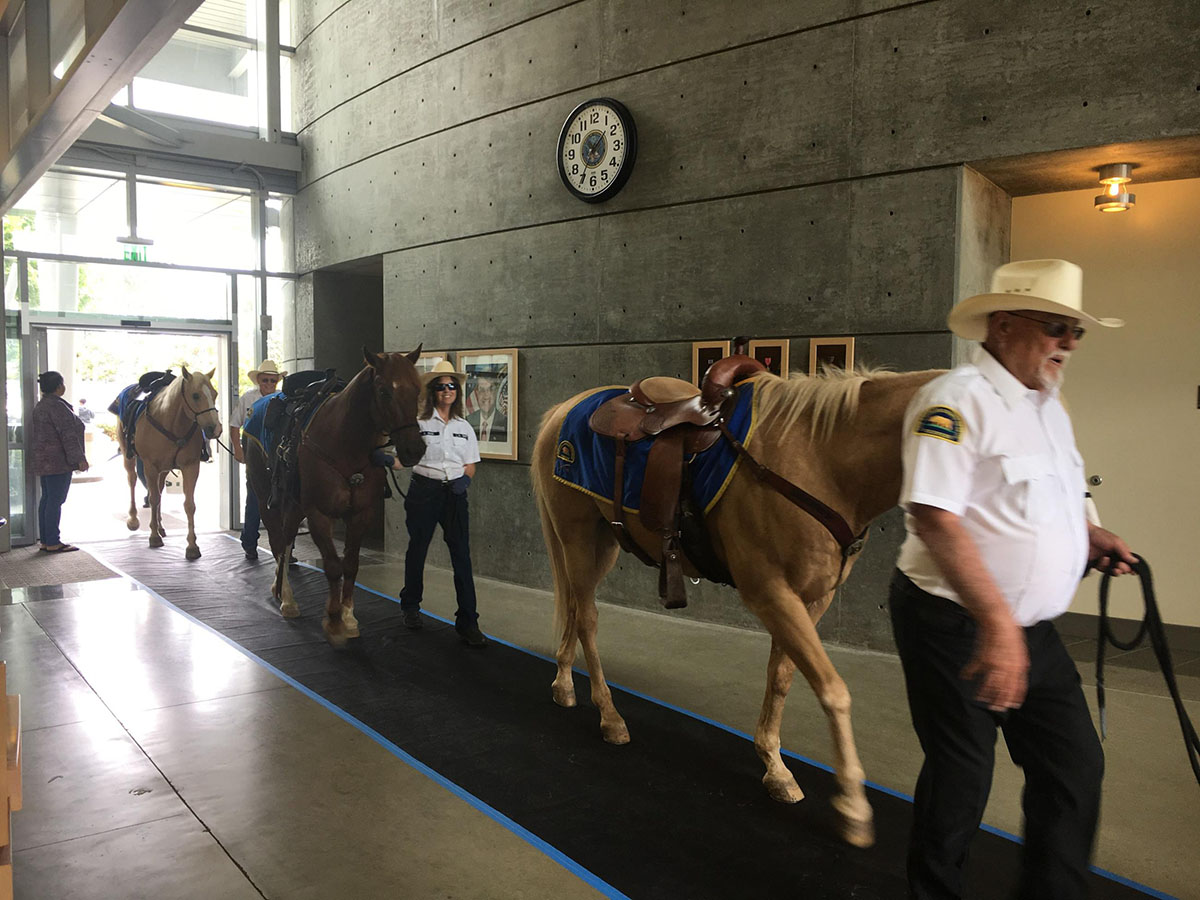 """EET had the sincere pleasure of being able to participate in the Long Beach VA's """"Women's Wellness"""" event- and brought horses INTO the facility (a first for this VA). The veterans and staff that attended the event got to interact with the horses and experience their healing power."""