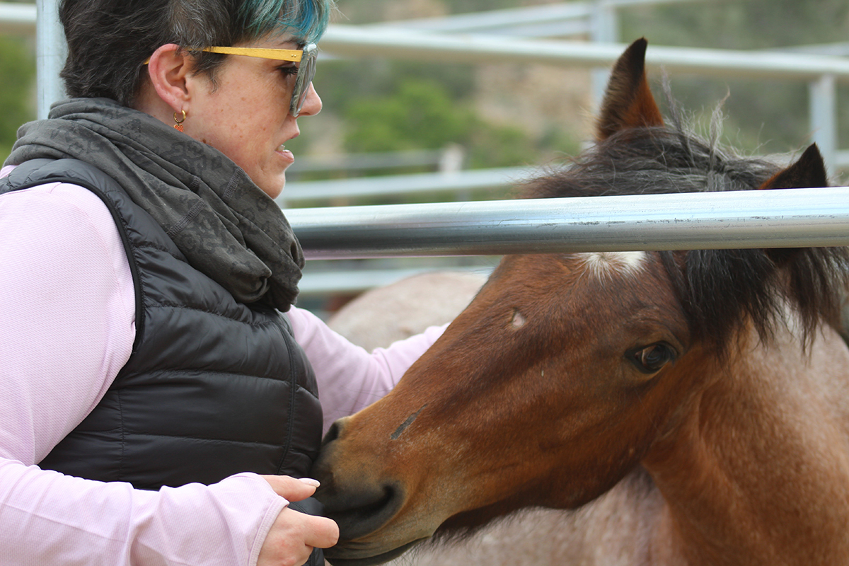 Marie's first time around wild rescued mustangs allowed her to break out of her shell and trust herself, and her horse followed her lead and trusted her too.