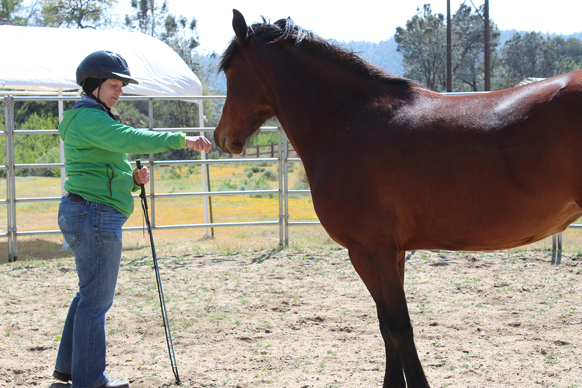 Genee is allowing herself to be calm and present in these first moments with a wild rescued mustang.