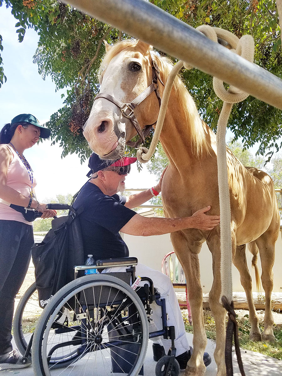 You don't have to have all 5 senses to work with horses. We had the honor of having veterans in the Blind Rehabilitation program at the Long Beach VA come out to work with horses with us. It was incredible for everyone involved.