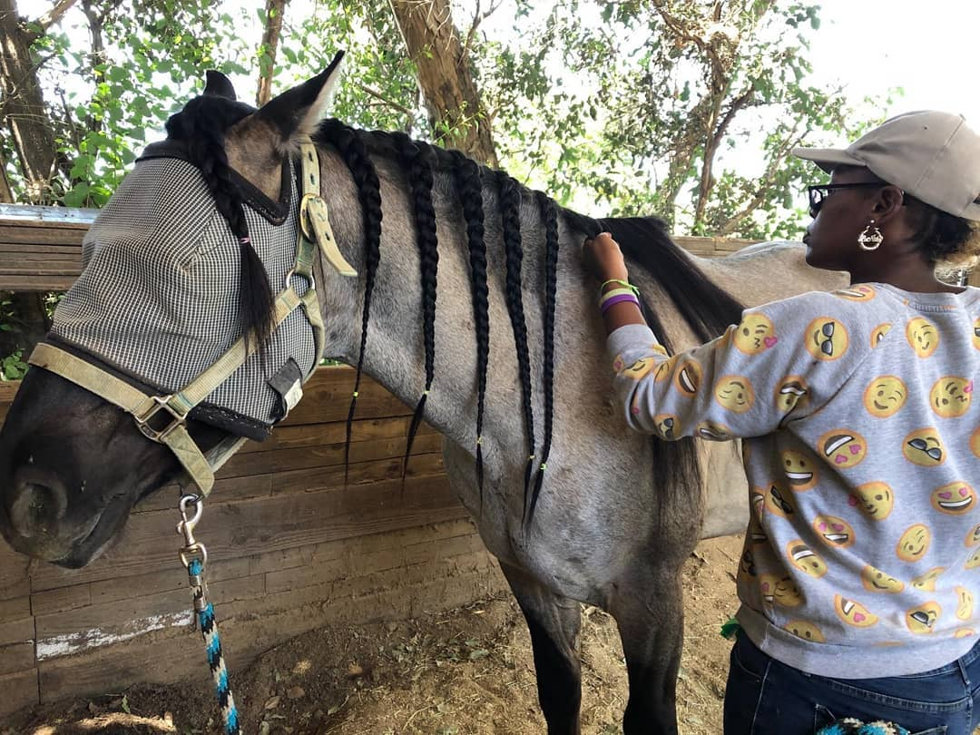LaNita is in advanced levels of our hands on training, and is getting a wide variety of skilled knowledge from ranch work, to Masterson Method, to specialty grooming for equine events.