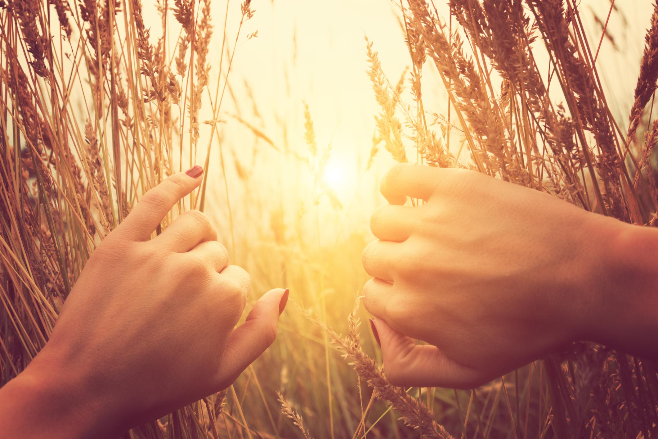 Bienvenidos a la Página de consejería y Terapia para Trauma - -Psicoterapeuta de Adultos y Jóvenes, Adriana Alejandre