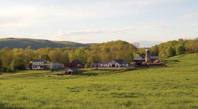 brookby-farm-raw-milk-dairy1-665x365.jpg