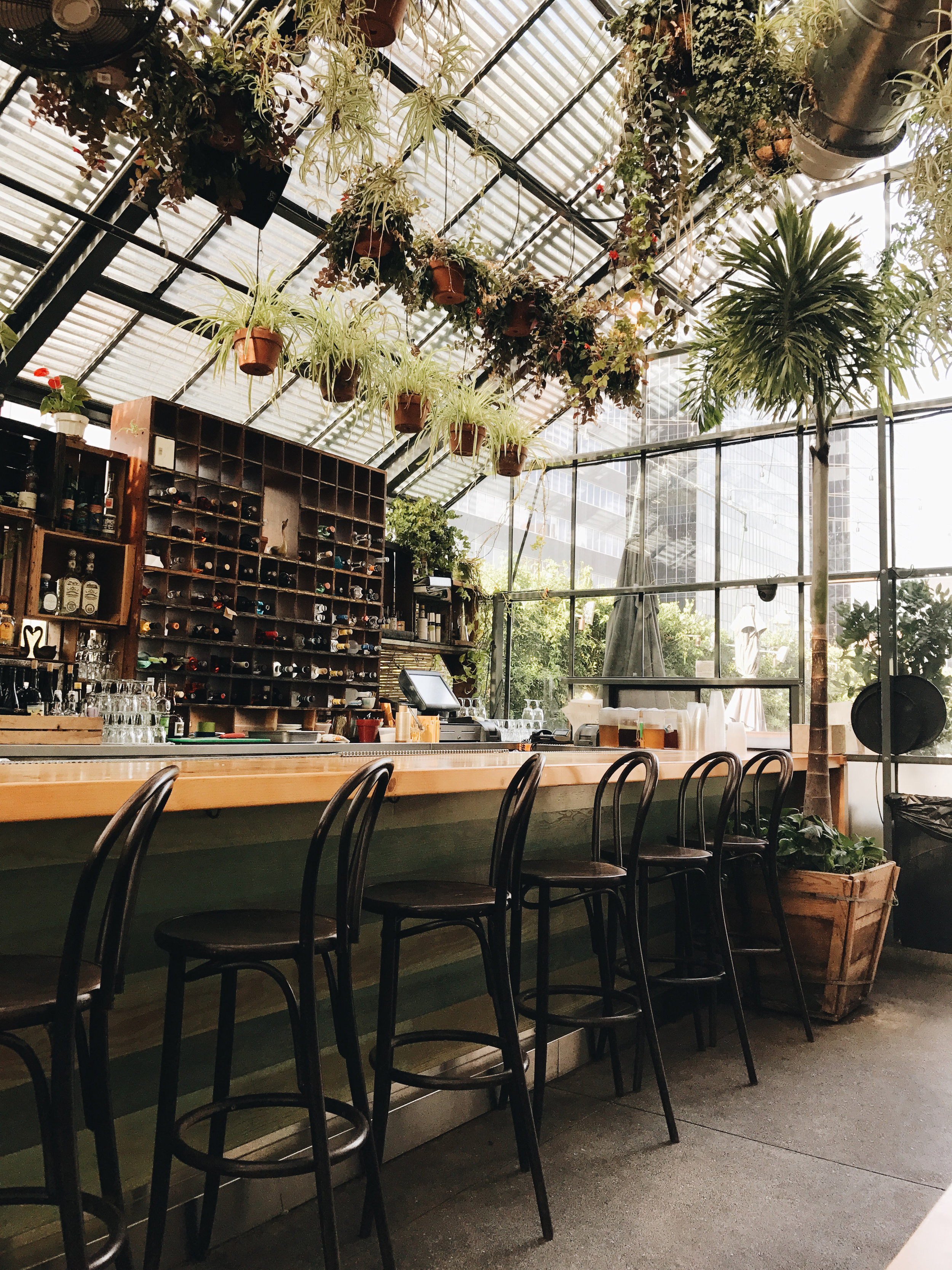 Commissary at The Line was beautiful. It's a restaurant inside a greenhouse and the food!! Delicious.