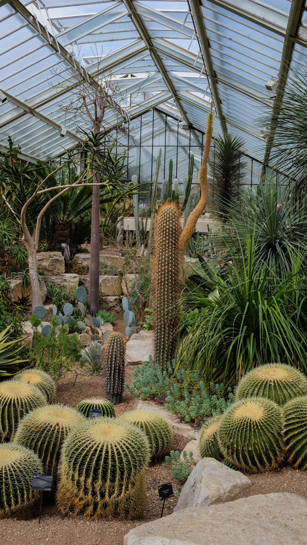 Kew_Gardens_23.jpg