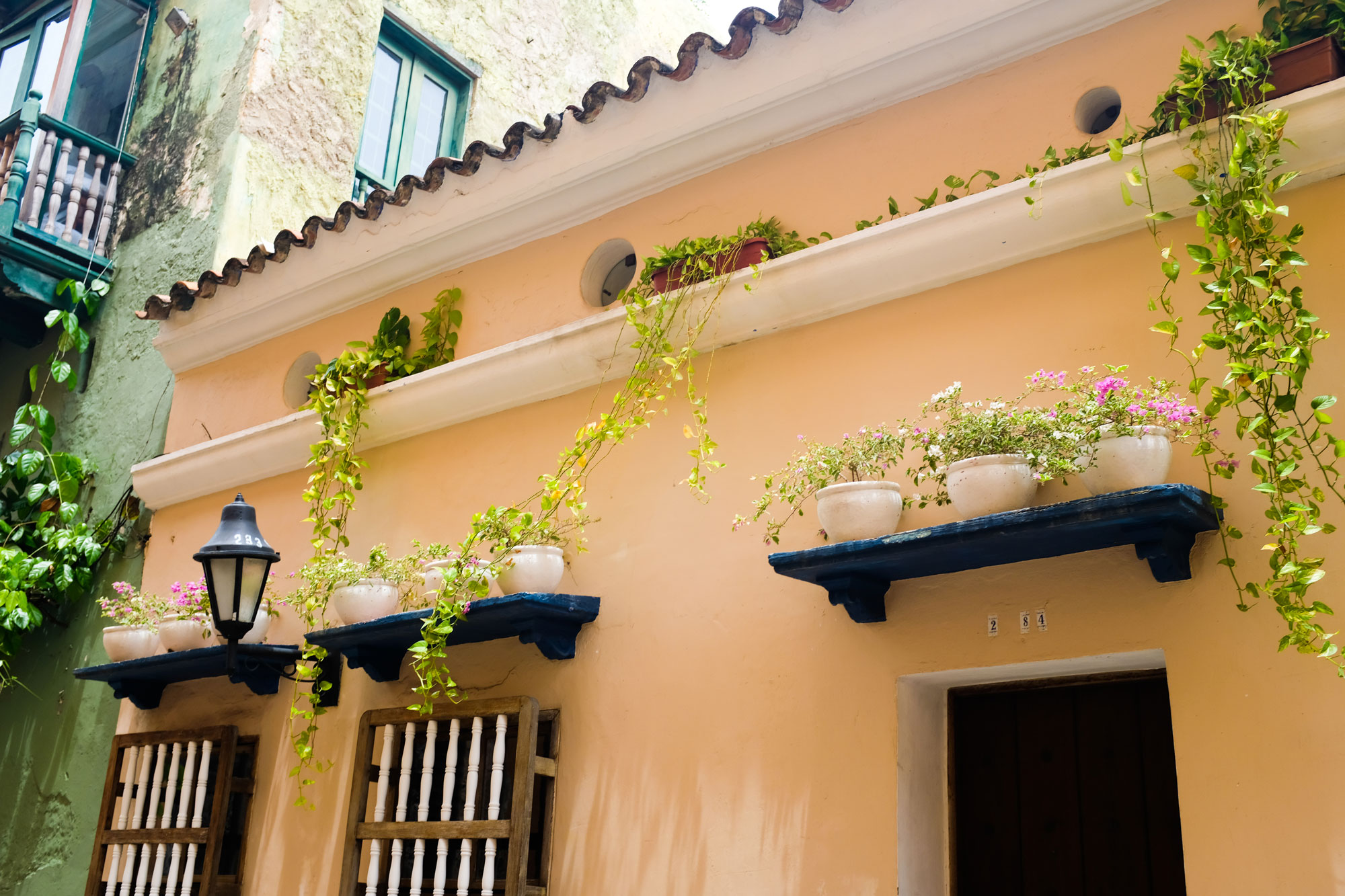Almost all the facades have some sort of plants intertwining along the walls.