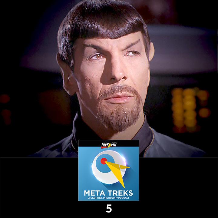 Meta Treks 5: Rocking the Goatee - Personal Identity.