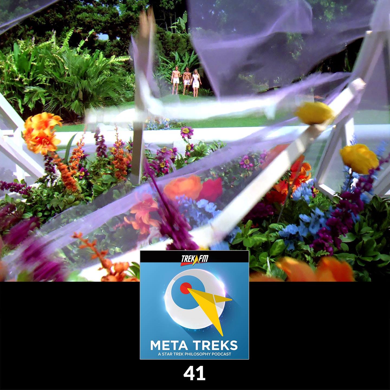 Meta Treks 41: Replant the Flowers - Justice.