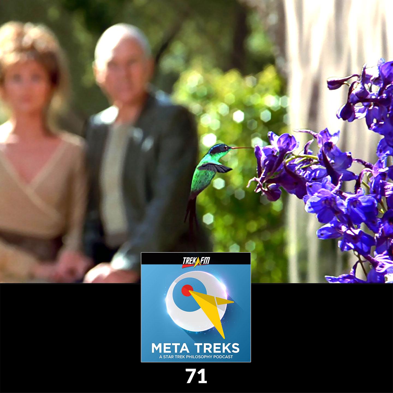 Meta Treks 71: Borg Butterfly Effect - Future Human Cultural Evolution with Patrick Devlin.