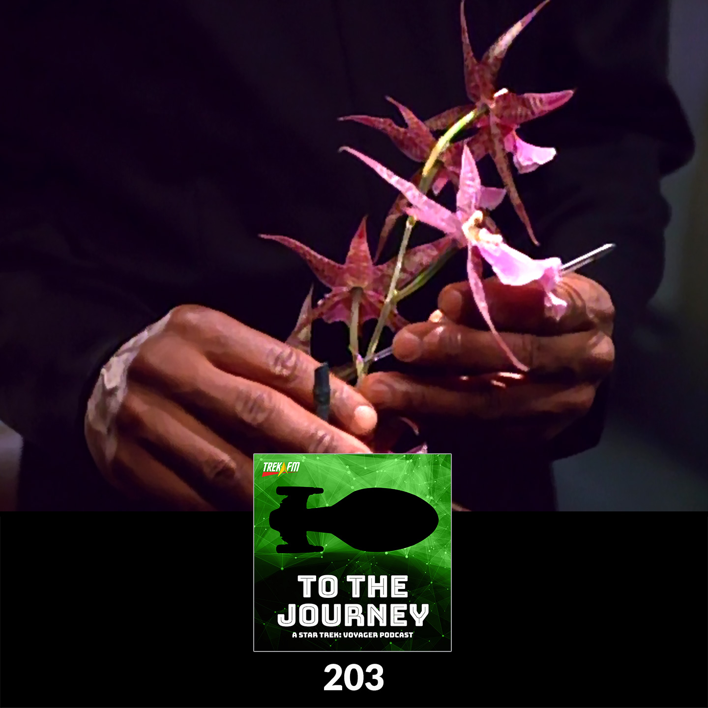 To The Journey 203: Guns N' Orchids - Tuvok Unhinged.