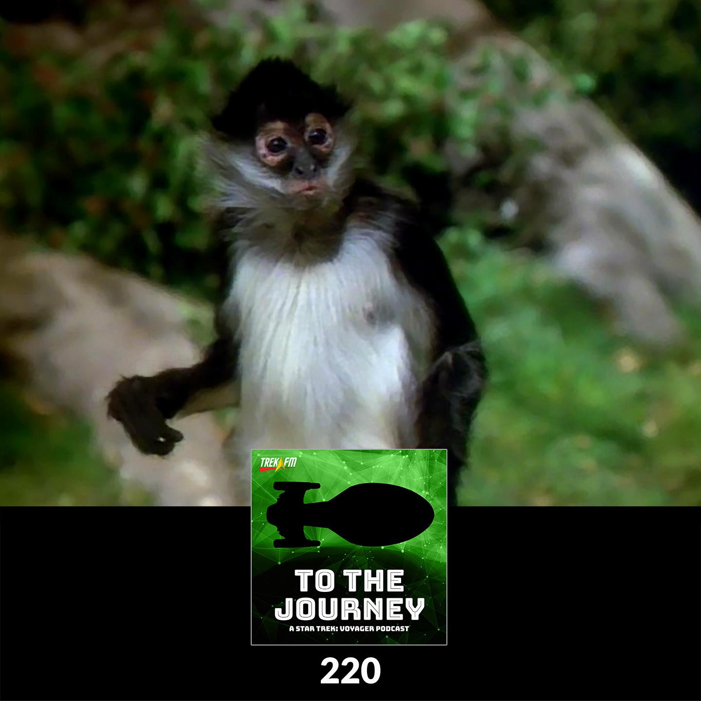 To The Journey 220: Who's Bringing the Monkey? - Desert Island Episodes - Voyager Season 2.