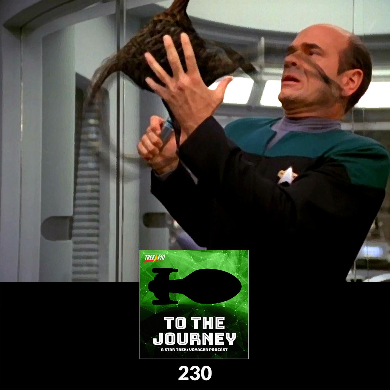 To The Journey 230: Macrovirus? Tastes Like Chicken - Desert Island Episodes - Voyager Season 3.